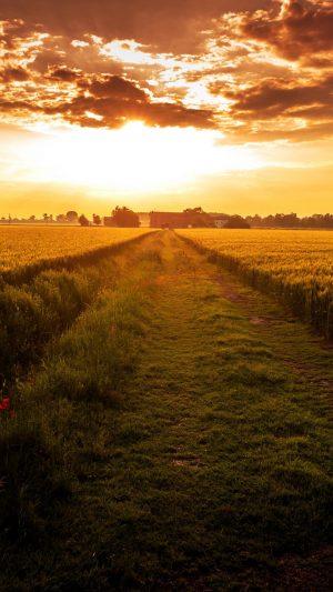 Field Path Sunset Wallpaper 1080x1920 300x533 - Nature Wallpapers