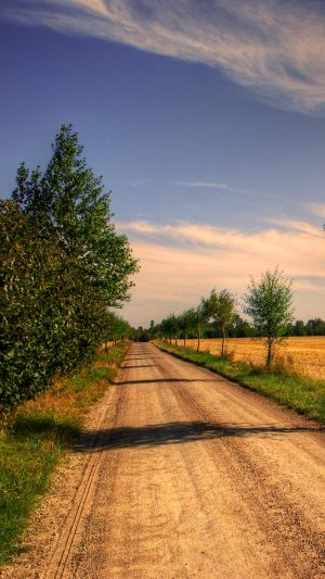 Field Road Trees Landscape Wallpaper 1080x1920 300x533 - Nature Wallpapers