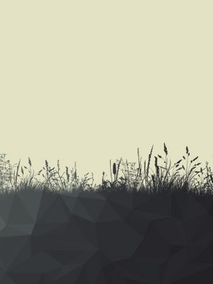 Grass Minimal Background HD Wallpaper 300x400 - Minimal Wallpapers