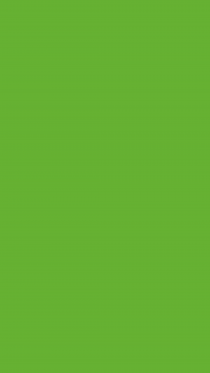 Green Ryb Solid Color Background Wallpaper for Mobile Phone 300x533 - Solid Color Wallpapers