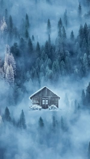 House Fog Snow Wallpaper 1080x1920 300x533 - Nature Wallpapers