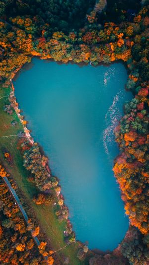 Lake Trees Aerial Wallpaper 1080x1920 300x533 - Nature Wallpapers
