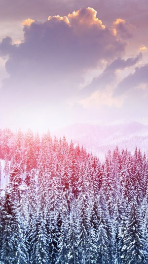 Landscape Winter Snow Trees Mountains Forest Sky Clouds Wallpaper 1080x1920 300x533 - White Wallpapers