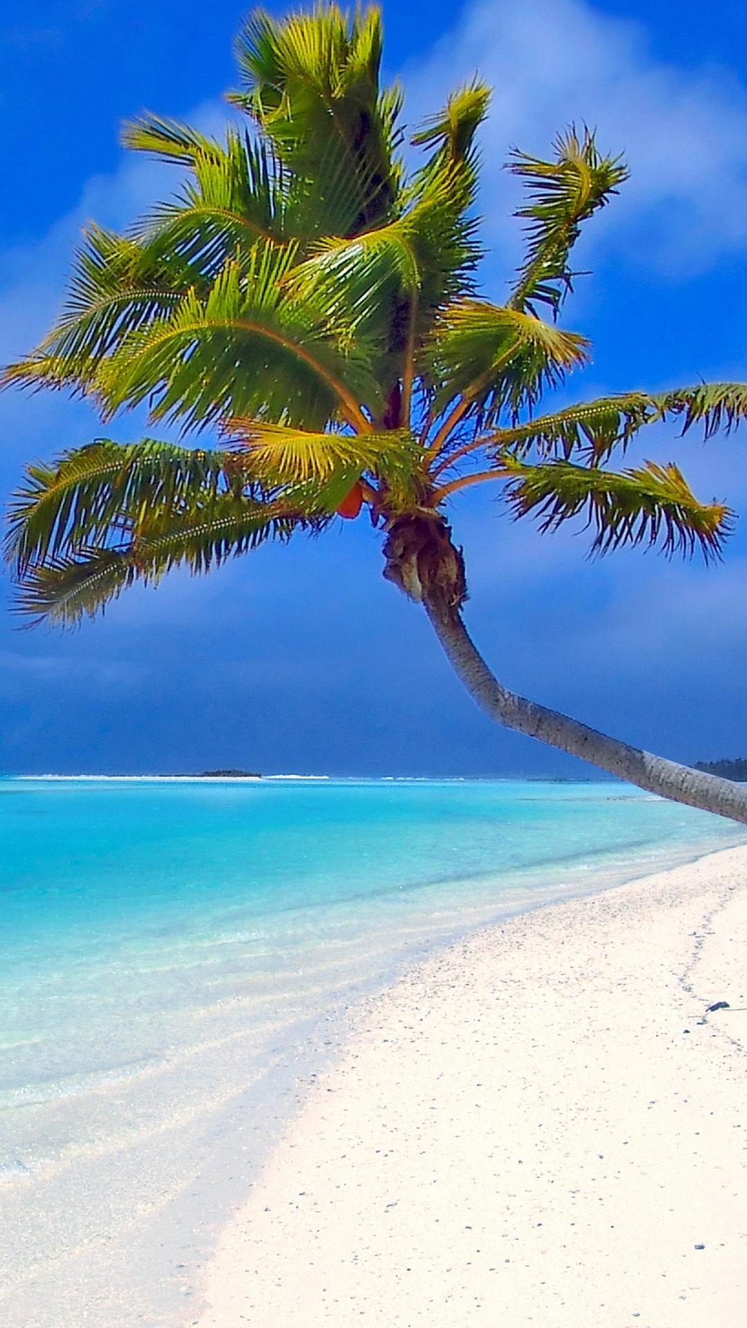Maldives Beach Palm Trees Sand Sea Wallpaper 1080x1920
