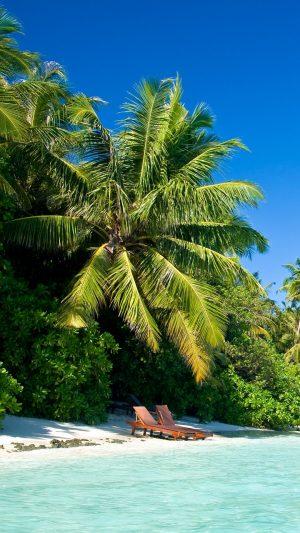 Maldives Tropical Beach Palm Trees Summer Heat Wallpaper 1080x1920 300x533 - Nature Wallpapers