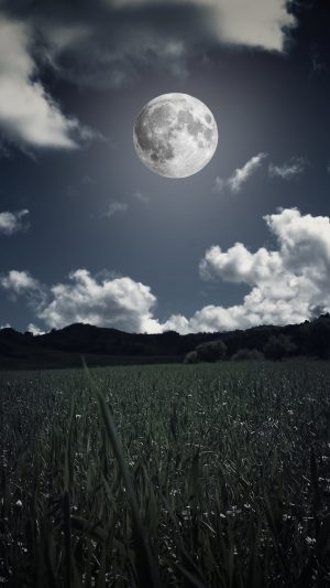 Moon Clouds Grass Wallpaper 1080x1920 300x533 - Nature Wallpapers