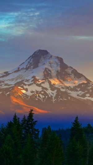 Mountain Peak Trees Wallpaper 1080x1920 300x533 - Nature Wallpapers