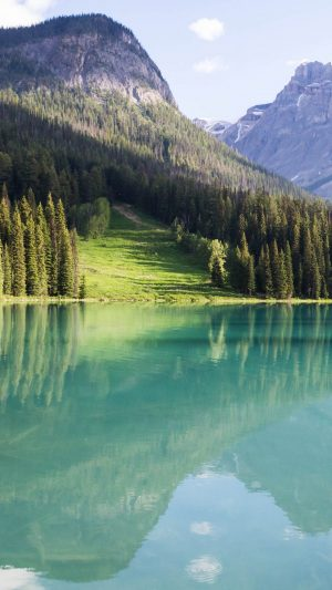 Mountains Landscape Trees Lake Peyto Wallpaper 1080x1920 300x533 - Nature Wallpapers