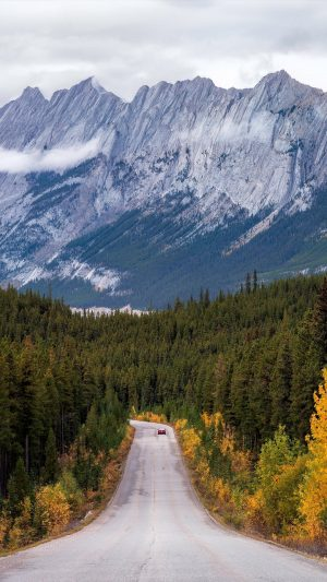 Mountains Road Distance Turn Wallpaper 1080x1920 300x533 - Nature Wallpapers