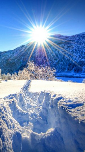 Nature Forest Dawn Winter Mountains Wallpaper 1080x1920 300x533 - Nature Wallpapers