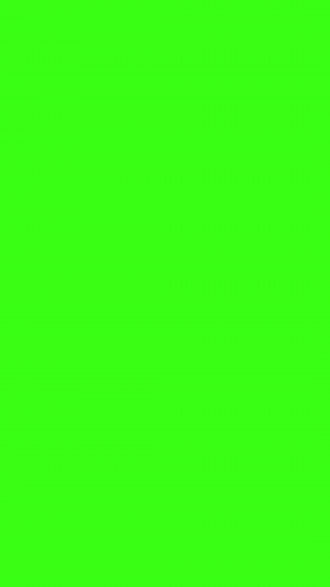 Neon Green Solid Color Background Wallpaper for Mobile Phone 300x533 - Solid Color Wallpapers