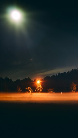 Night Fog Moon Wallpaper 1080x1920 300x533 - Nature Wallpapers