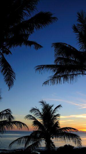 Palms Sunset Sea Wallpaper 1080x1920 300x533 - Nature Wallpapers