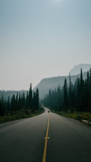 Road Marking Fog Mountains Movement Wallpaper 1080x1920 300x533 - Nature Wallpapers