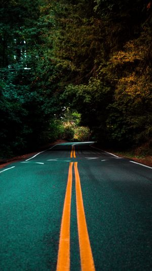 Road Marking Turn Wallpaper 1080x1920 300x533 - Nature Wallpapers