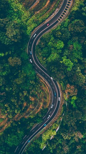 Road View From Above Trees Wallpaper 1080x1920 300x533 - Nature Wallpapers