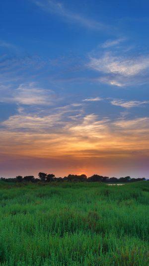 Salicornia Field Sunset Wallpaper 1080x1920 300x533 - Nature Wallpapers