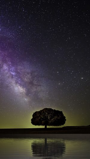 Starry Sky Milky Way Tree Wallpaper 1080x1920 300x533 - Nature Wallpapers