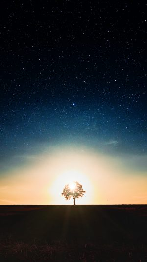 Starry Sky Tree Alone Wallpaper 1080x1920 300x533 - Nature Wallpapers