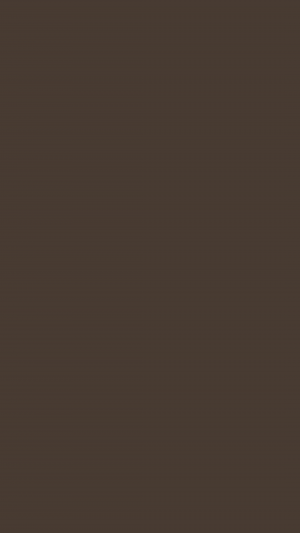 Taupe Solid Color Background Wallpaper for Mobile Phone 300x533 - Solid Color Wallpapers
