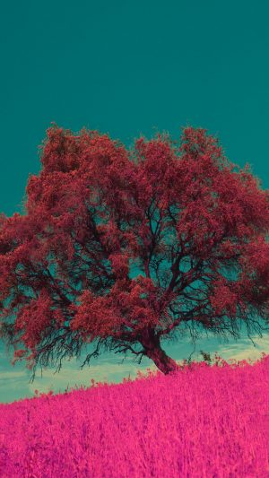 Tree Pink Photoshop Wallpaper 1080x1920 300x533 - Nature Wallpapers