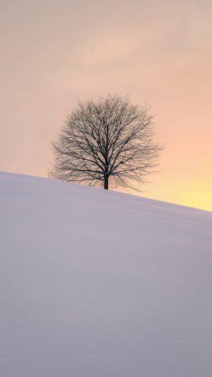 Tree Winter Minimalism Wallpaper 1080x1920 300x533 - Nature Wallpapers