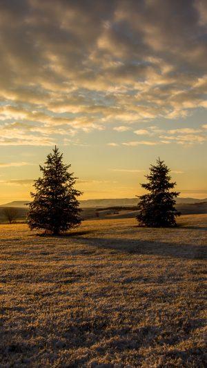 Trees Sunset Sky Grass Wallpaper 1080x1920 300x533 - Nature Wallpapers