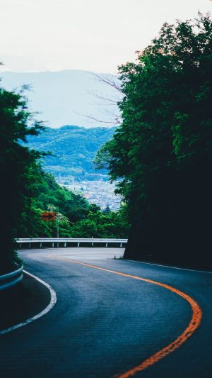 Turn Road Mountains Trees Marking Wallpaper 1080x1920 300x533 - Nature iPhone Wallpapers