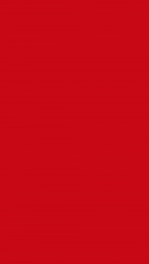 Venetian Red Solid Color Background Wallpaper for Mobile Phone 300x533 - Solid Color Wallpapers