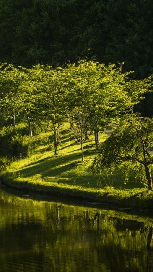 Virginia Park Lake Nature Trees Wallpaper 1080x1920 300x533 - Nature Wallpapers