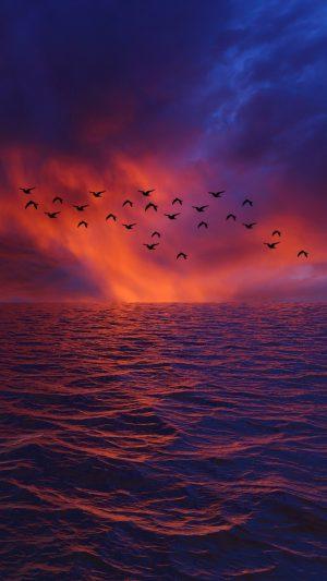 Waves Sky Birds Wallpaper 1080x1920 300x533 - Nature Wallpapers