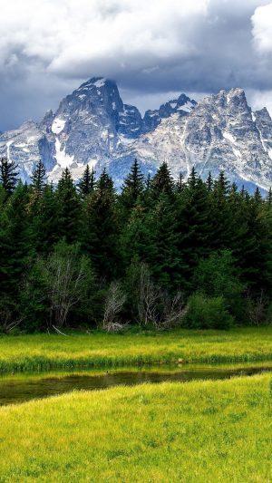 Wood Stream Mountains Cloudy Fir Trees Grass Wallpaper 1080x1920 300x533 - Nature Wallpapers